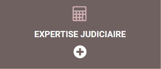 expertise-judiciaire-chp-expertises-paris-9